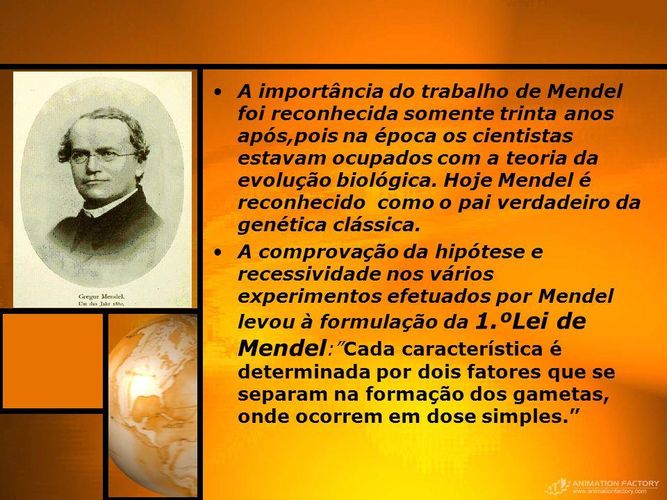 A importância do trabalho de Mendel foi reconhecida somente trinta anos após,pois na época os cientistas estavam ocupados com a teoria da evolução biológica.