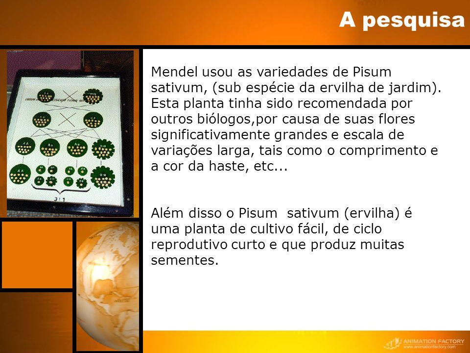 A pesquisa Mendel usou as variedades de Pisum sativum, (sub espécie da ervilha de jardim). Esta planta tinha sido recomendada por outros biólogos,por