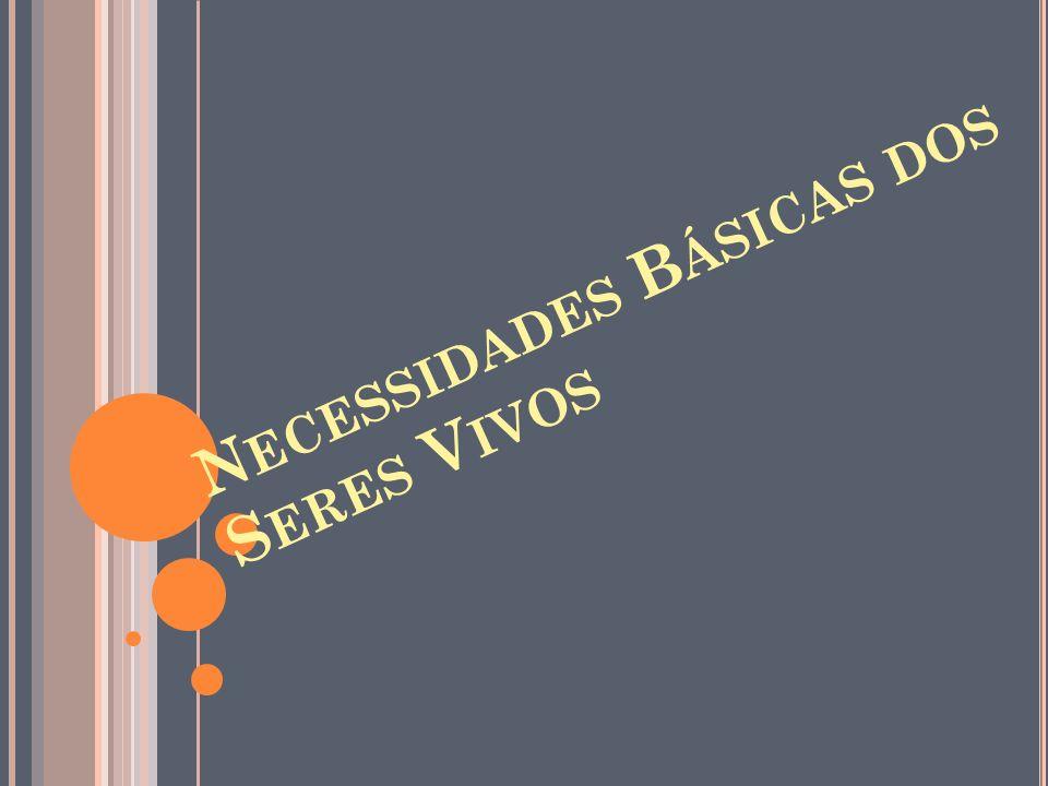 N ECESSIDADES B ÁSICAS DOS S ERES V IVOS