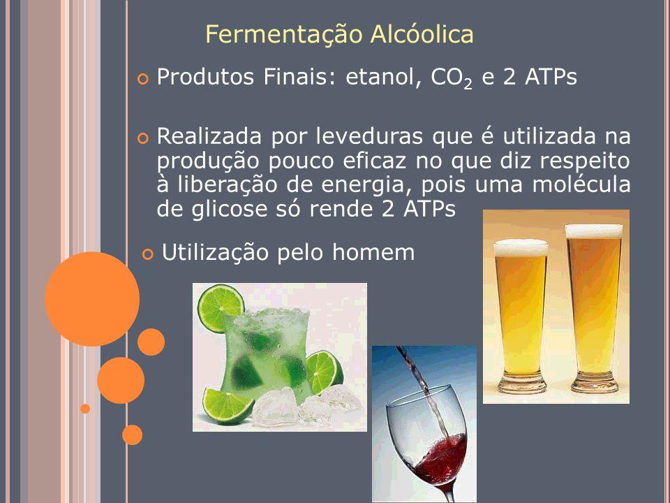 Fermentação Alcóolica Produtos Finais: etanol, CO 2 e 2 ATPs Realizada por leveduras que é utilizada na produção pouco eficaz no que diz respeito à li
