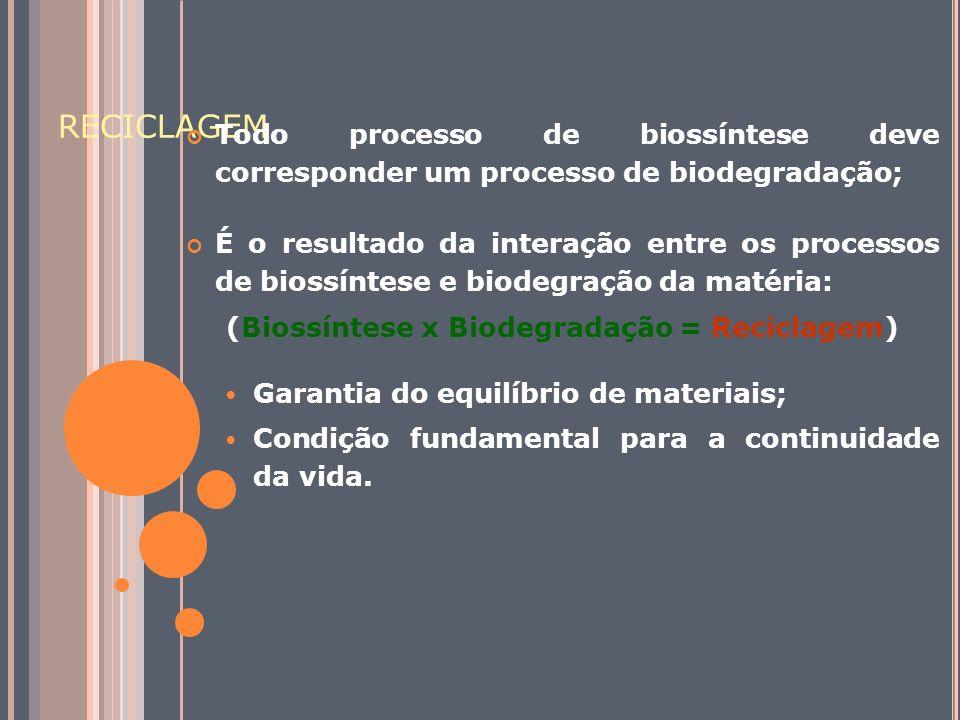RECICLAGEM Todo processo de biossíntese deve corresponder um processo de biodegradação; É o resultado da interação entre os processos de biossíntese e