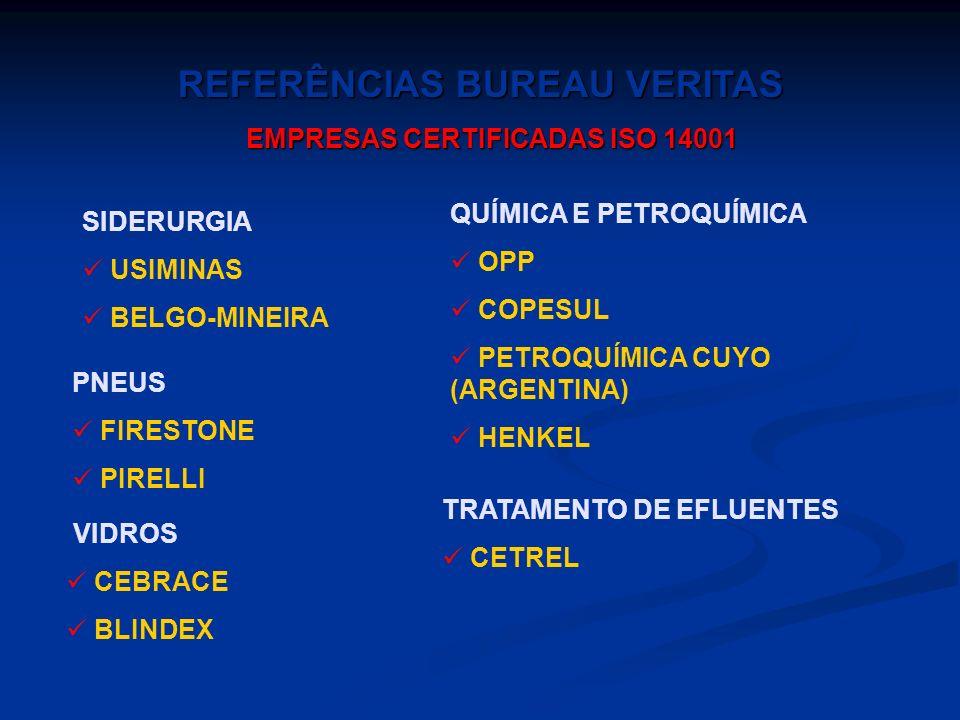 FARMACÊUTICA BRISTOL - MYERS SQÜIB FLORESTAL BAHIA SUL CELULOSE DURATEX RIOCELL CENIBRA PAPELES BIO-BIO (CHILE) SANTA FÉ (CHILE) MINERAÇÃO E METALURGI