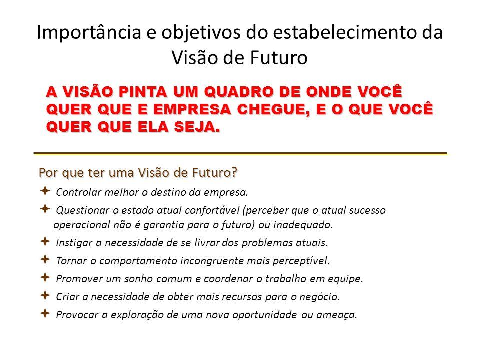 Importância e objetivos do estabelecimento da Visão de Futuro A VISÃO PINTA UM QUADRO DE ONDE VOCÊ QUER QUE E EMPRESA CHEGUE, E O QUE VOCÊ QUER QUE ELA SEJA.