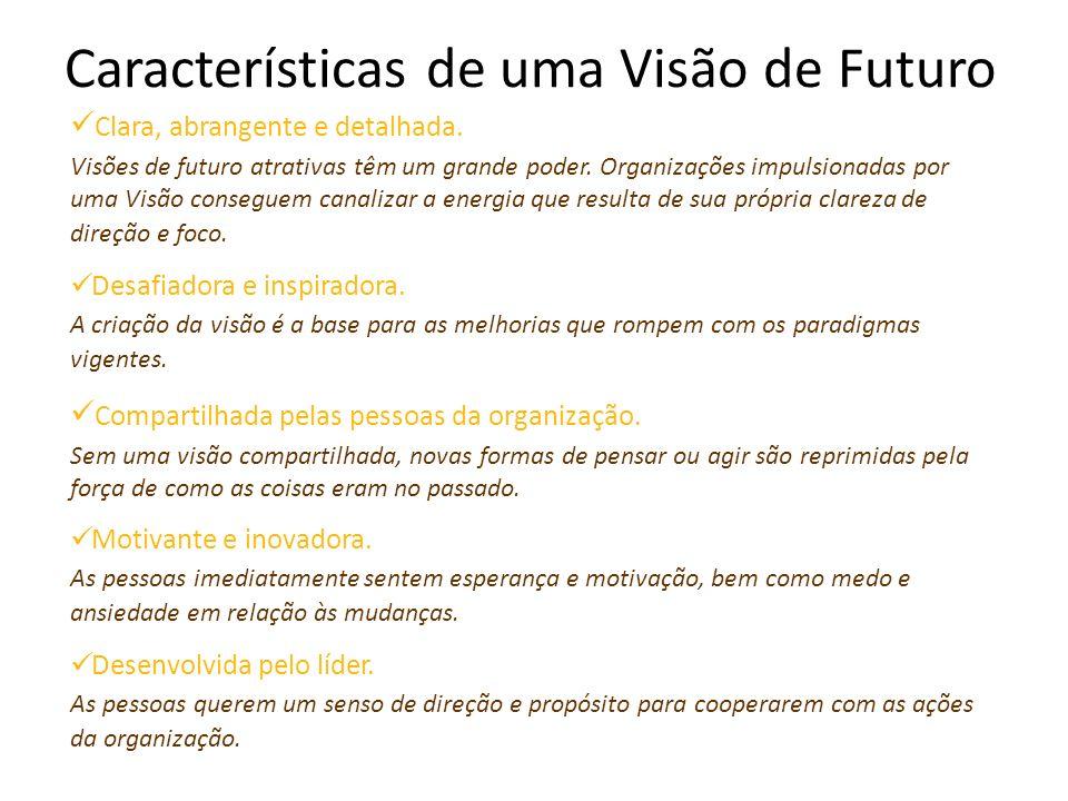 Características de uma Visão de Futuro Clara, abrangente e detalhada.