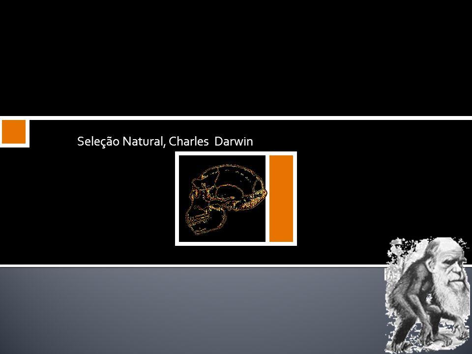 Positivos Atitude científica correta, observação da natureza, elaborando o conceito da seleção natural; Estabeleceu que todas as espécies, incluindo o
