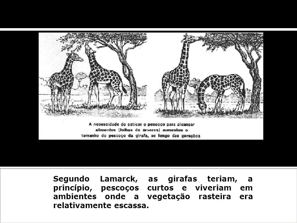 Zoologista e botânico francês, nascido em Bazantin, um dos pioneiros na formulação das teorias da evolução biológica. Filosofia Zoológica (1809) Leis: