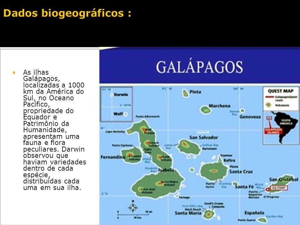As ilhas Galápagos, localizadas a 1000 km da América do Sul, no Oceano Pacífico, propriedade do Equador e Patrimônio da Humanidade, apresentam uma fauna e flora peculiares.