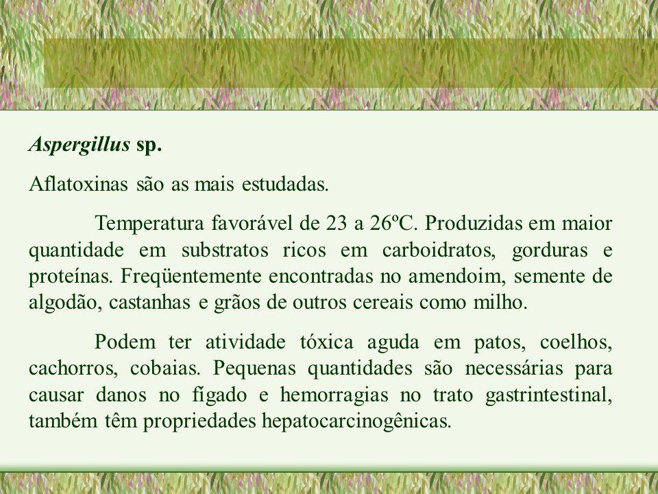 Aspergillus sp. Aflatoxinas são as mais estudadas. Temperatura favorável de 23 a 26ºC. Produzidas em maior quantidade em substratos ricos em carboidra