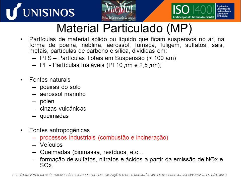 GESTÃO AMBIENTAL NA INDÚSTRIA SIDERÚRGICA – CURSO DE ESPECIALIZAÇÃO EM METALURGIA – ÊNFASE EM SIDERURGIA – 24 A 25/11/2006 – FEI - SÃO PAULO Material