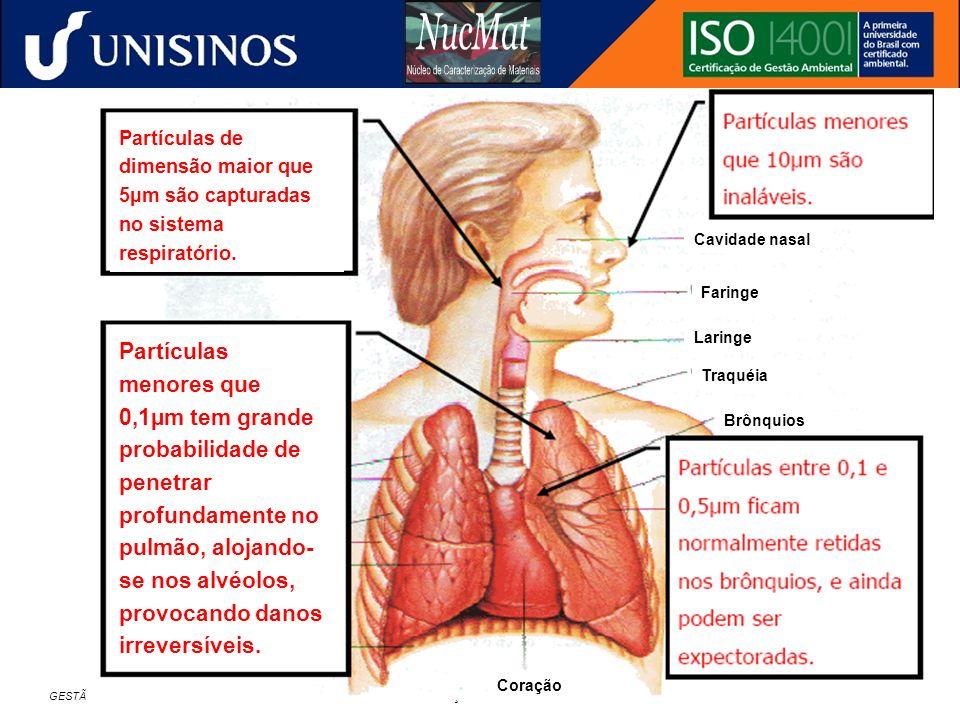 GESTÃO AMBIENTAL NA INDÚSTRIA SIDERÚRGICA – CURSO DE ESPECIALIZAÇÃO EM METALURGIA – ÊNFASE EM SIDERURGIA – 24 A 25/11/2006 – FEI - SÃO PAULO Cavidade