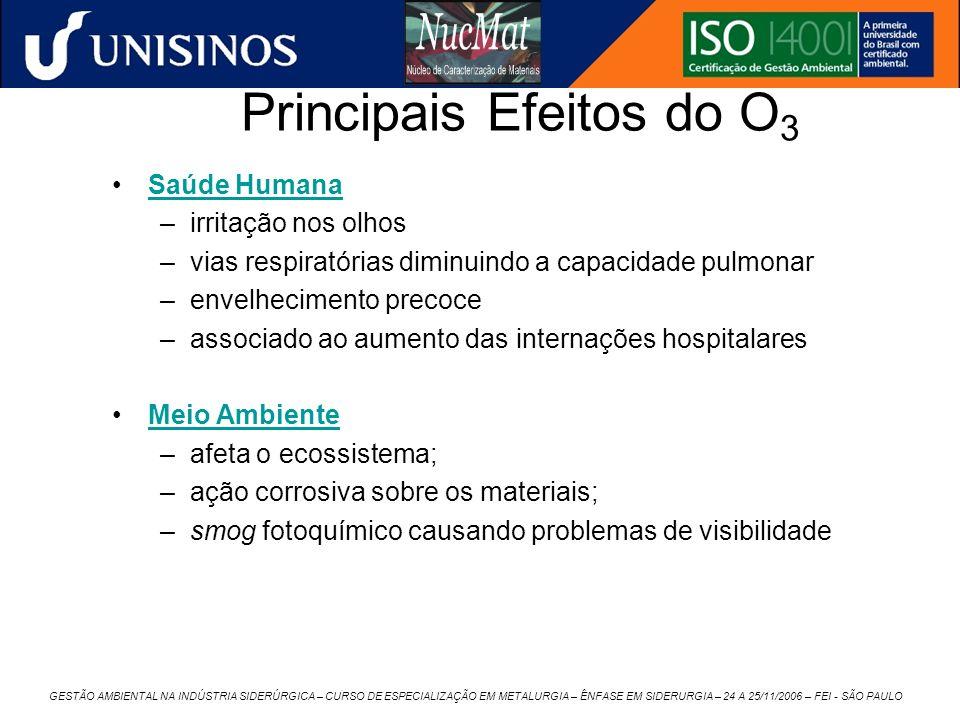 GESTÃO AMBIENTAL NA INDÚSTRIA SIDERÚRGICA – CURSO DE ESPECIALIZAÇÃO EM METALURGIA – ÊNFASE EM SIDERURGIA – 24 A 25/11/2006 – FEI - SÃO PAULO Principai