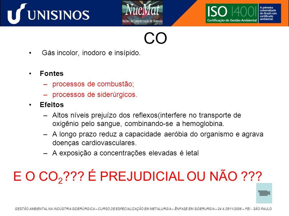 CO Gás incolor, inodoro e insípido. Fontes –processos de combustão; –processos de siderúrgicos. Efeitos –Altos níveis prejuízo dos reflexos(interfere