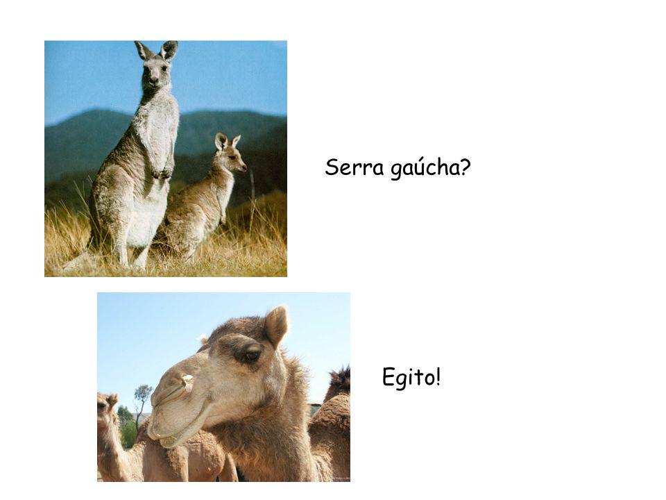 Serra gaúcha? Egito!