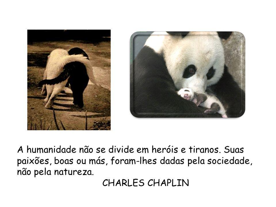 A humanidade não se divide em heróis e tiranos. Suas paixões, boas ou más, foram-lhes dadas pela sociedade, não pela natureza. CHARLES CHAPLIN