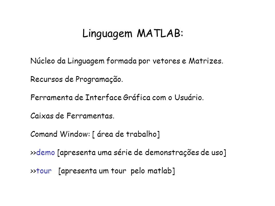 Matrizes: Como criar: Opção 1: a partir de vetores C=[ 2 3];D=[ 3 4]; M=[C;D] Opção 2: M= [ 2 3; 3 4] ou M=[ 2,3; 3, 4]; Opção 3: usando estrutura for For i=1:2 For j=1:2 M(i,j)=i+j; end >>help printmat [ exibição da matriz na tela]
