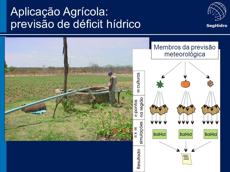 SegHidro Membros da previsão meteorológica Aplicação Agrícola: previsão de déficit hídrico