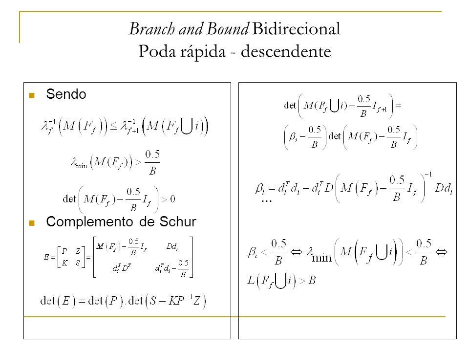Branch and Bound Bidirecional Poda rápida - ascendente Seja Inversão de Banachiewicz Complemento de Schur