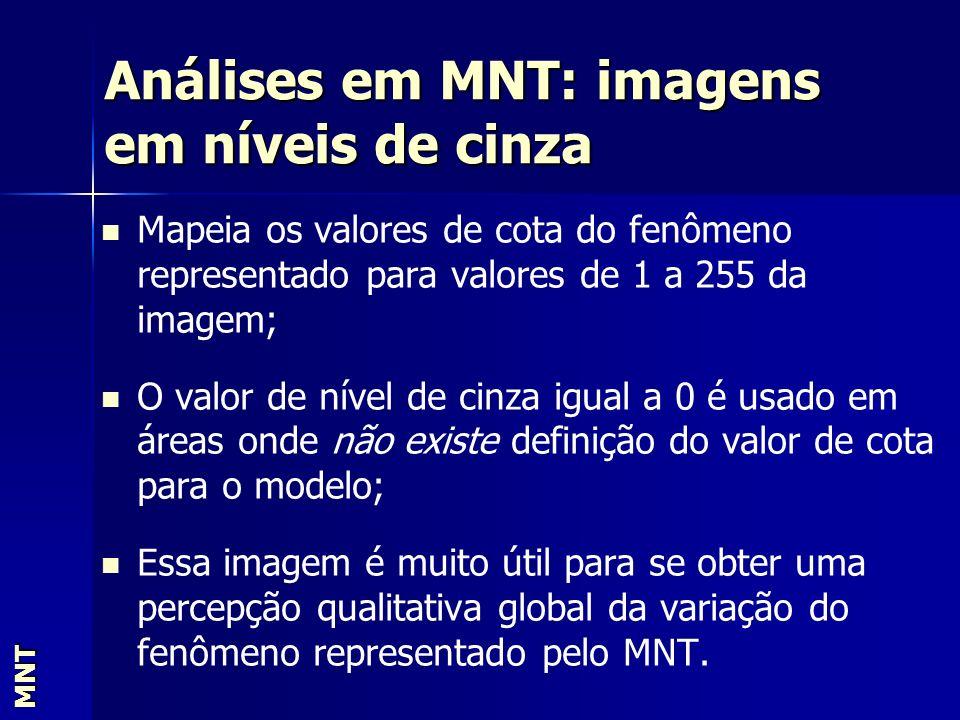 Análises em MNT: imagens em níveis de cinza MNT Mapeia os valores de cota do fenômeno representado para valores de 1 a 255 da imagem; O valor de nível