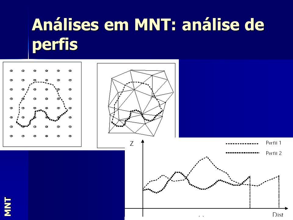 Análises em MNT: análise de perfis MNT