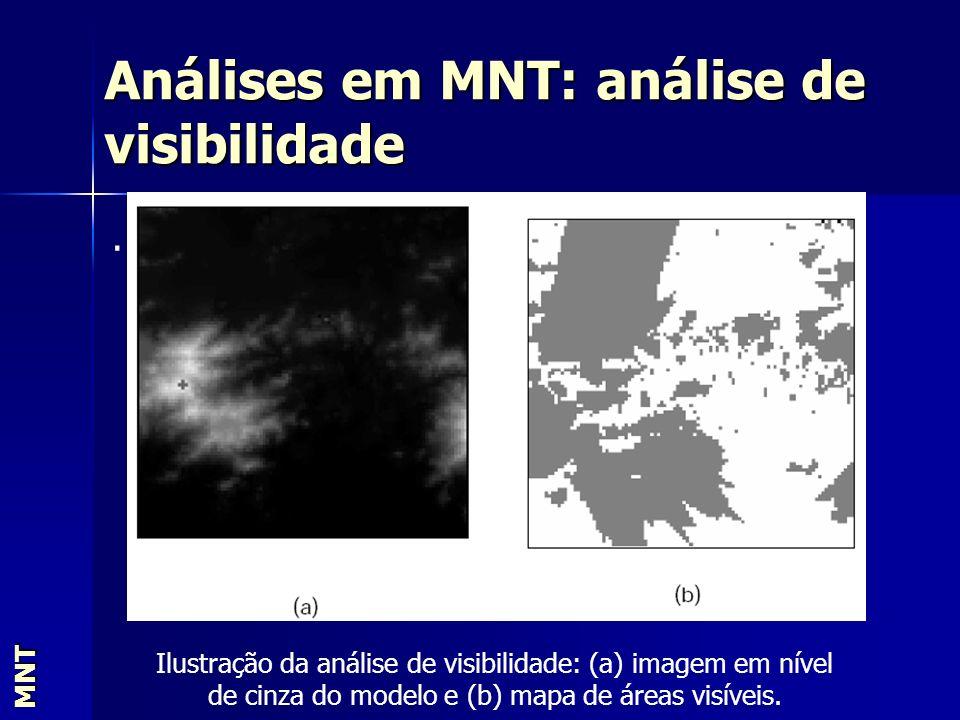 Análises em MNT: análise de visibilidade MNT. Ilustração da análise de visibilidade: (a) imagem em nível de cinza do modelo e (b) mapa de áreas visíve