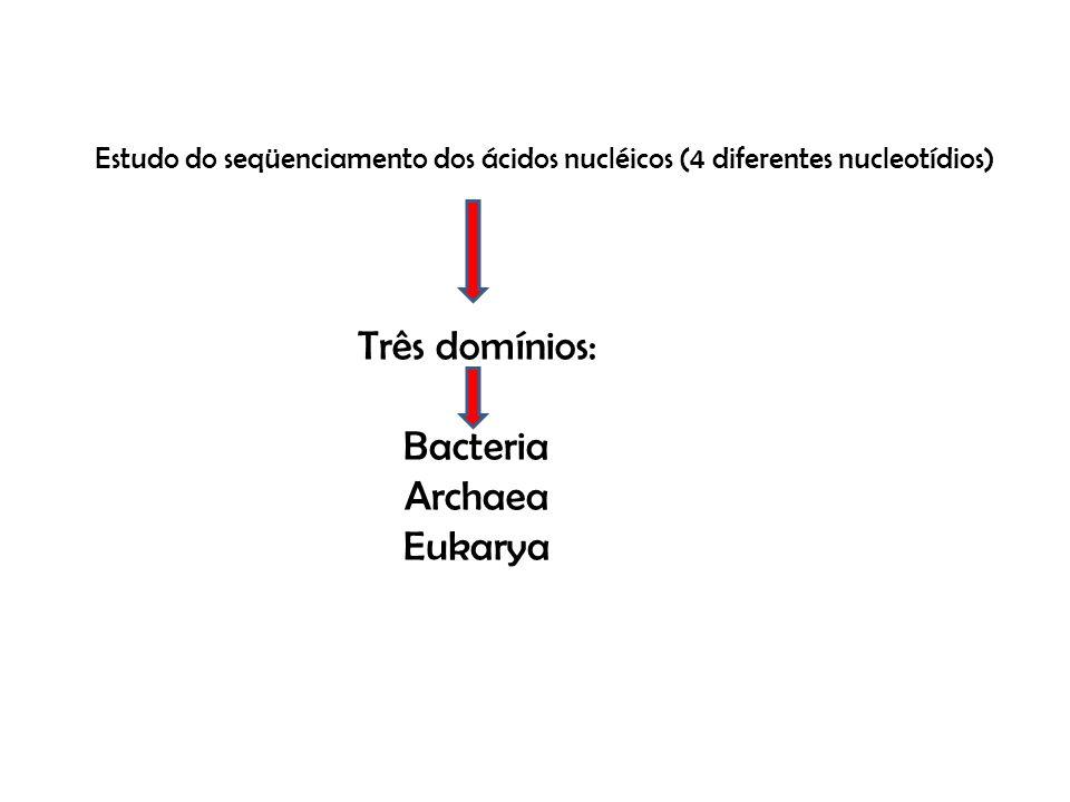 Três domínios: Bacteria Archaea Eukarya Estudo do seqüenciamento dos ácidos nucléicos (4 diferentes nucleotídios)