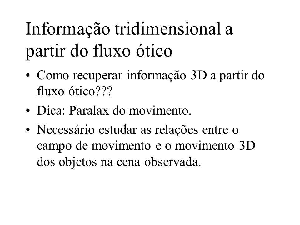 Informação tridimensional a partir do fluxo ótico Como recuperar informação 3D a partir do fluxo ótico??? Dica: Paralax do movimento. Necessário estud