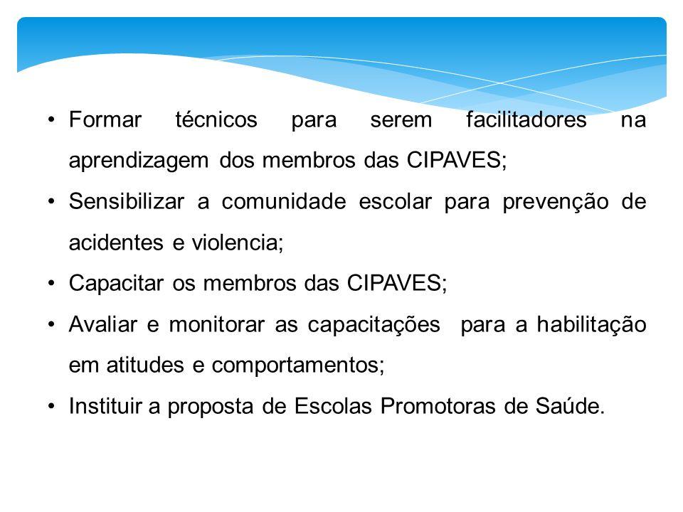 Formar técnicos para serem facilitadores na aprendizagem dos membros das CIPAVES; Sensibilizar a comunidade escolar para prevenção de acidentes e viol