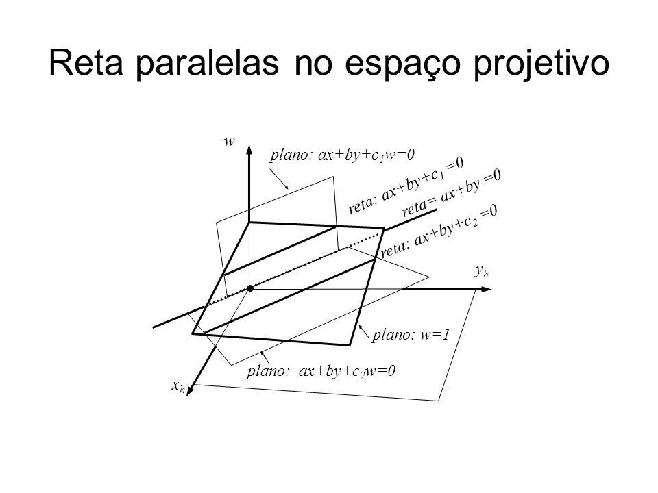 Reta paralelas no espaço projetivo yhyh xhxh w plano: ax+by+c 1 w=0 reta: ax+by+c 1 =0 reta: ax+by+c 2 =0 plano: ax+by+c 2 w=0 reta= ax+by =0 plano: w