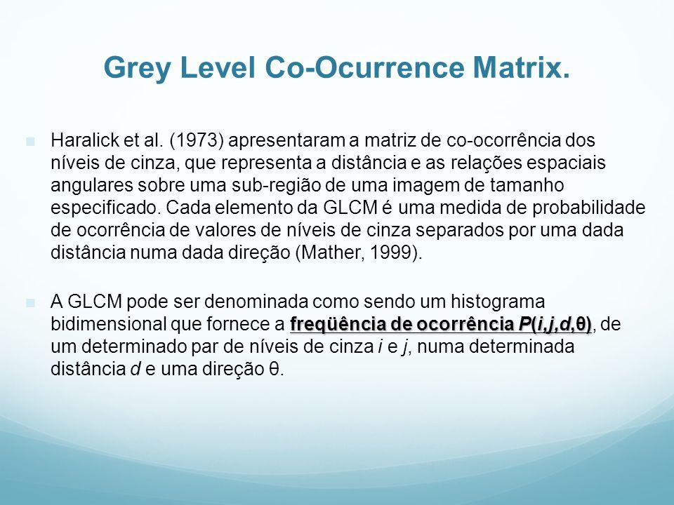 Grey Level Co-Ocurrence Matrix. Haralick et al. (1973) apresentaram a matriz de co-ocorrência dos níveis de cinza, que representa a distância e as rel
