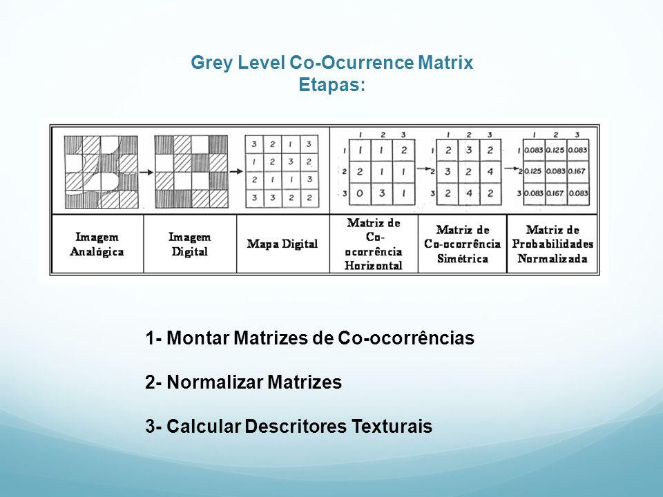 Grey Level Co-Ocurrence Matrix Etapas: 1- Montar Matrizes de Co-ocorrências 2- Normalizar Matrizes 3- Calcular Descritores Texturais