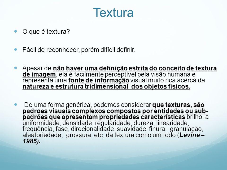 Textura O que é textura? Fácil de reconhecer, porém difícil definir. não haver uma definição estrita do conceito de textura de imagem fonte de informa