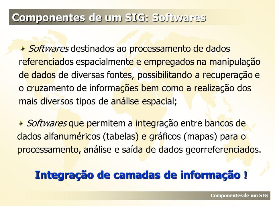 Softwares destinados ao processamento de dados referenciados espacialmente e empregados na manipulação de dados de diversas fontes, possibilitando a r