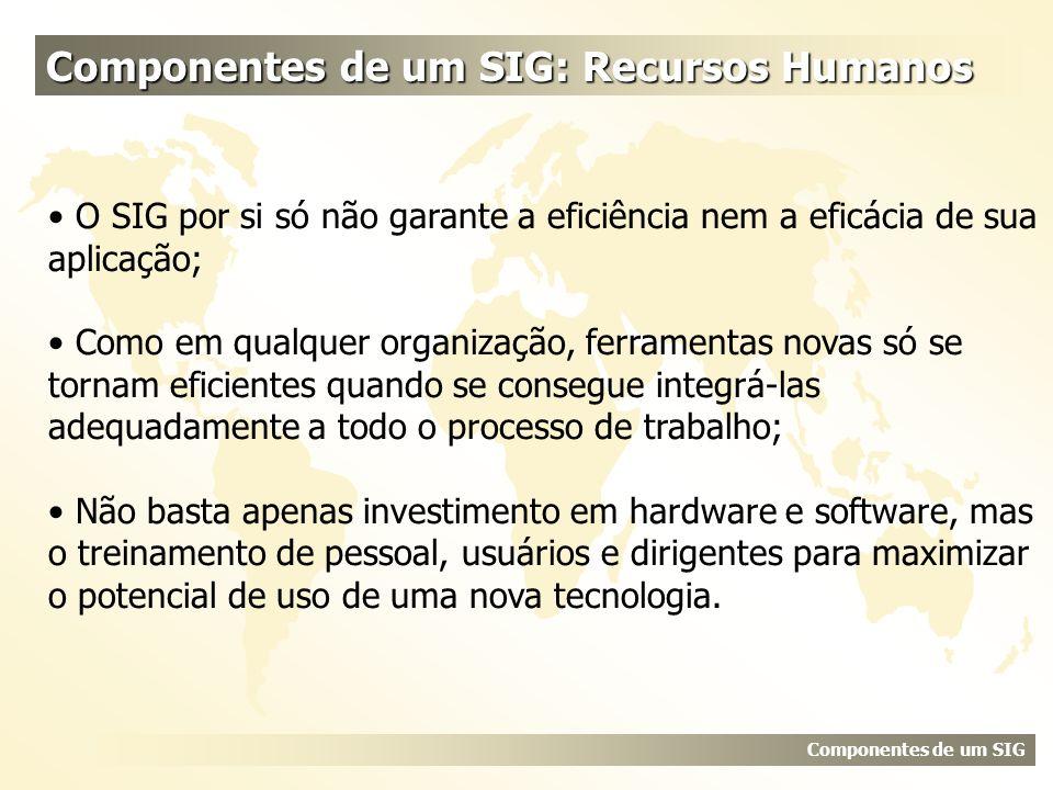 Componentes de um SIG: Recursos Humanos Componentes de um SIG O SIG por si só não garante a eficiência nem a eficácia de sua aplicação; Como em qualqu
