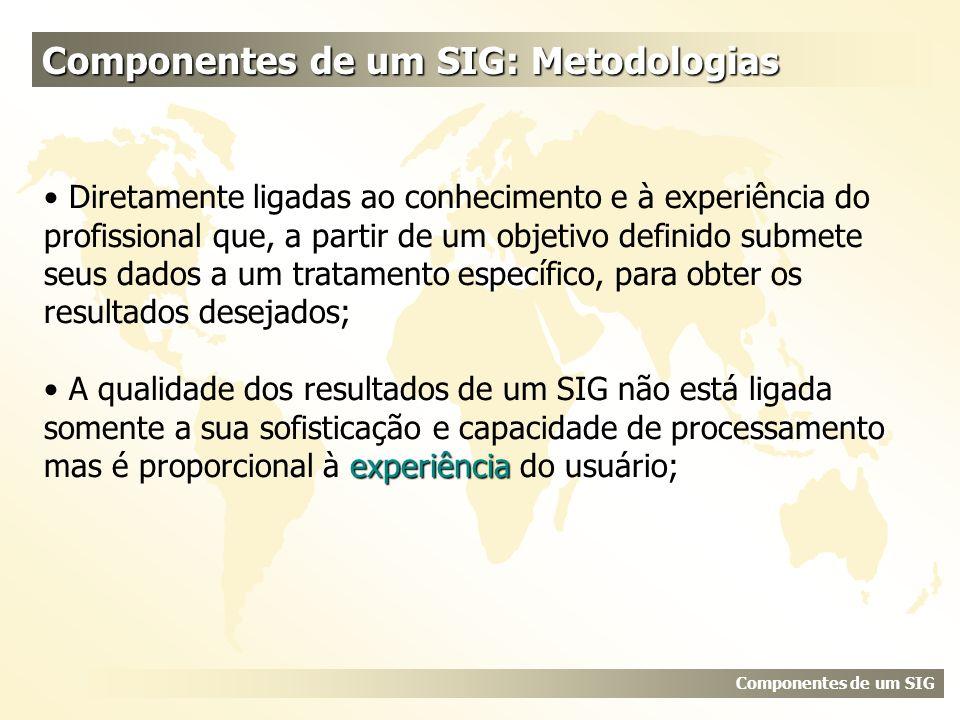 Componentes de um SIG: Metodologias Componentes de um SIG Diretamente ligadas ao conhecimento e à experiência do profissional que, a partir de um obje