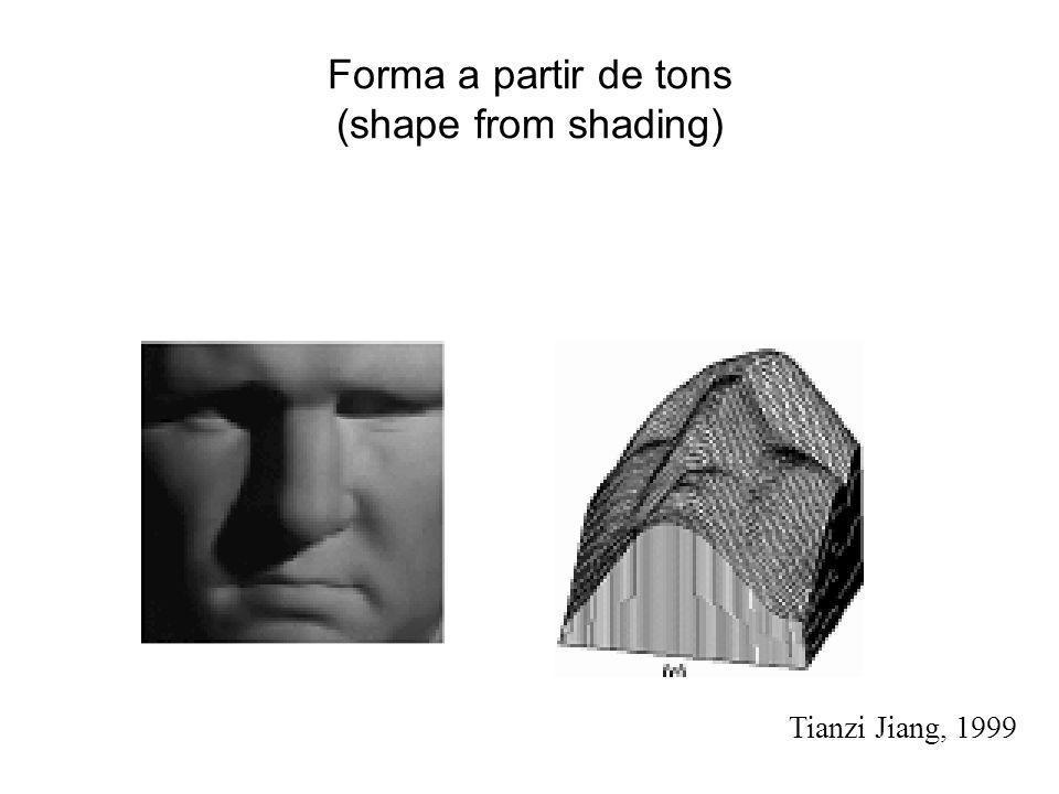 Forma a partir de tons (shape from shading) Tianzi Jiang, 1999