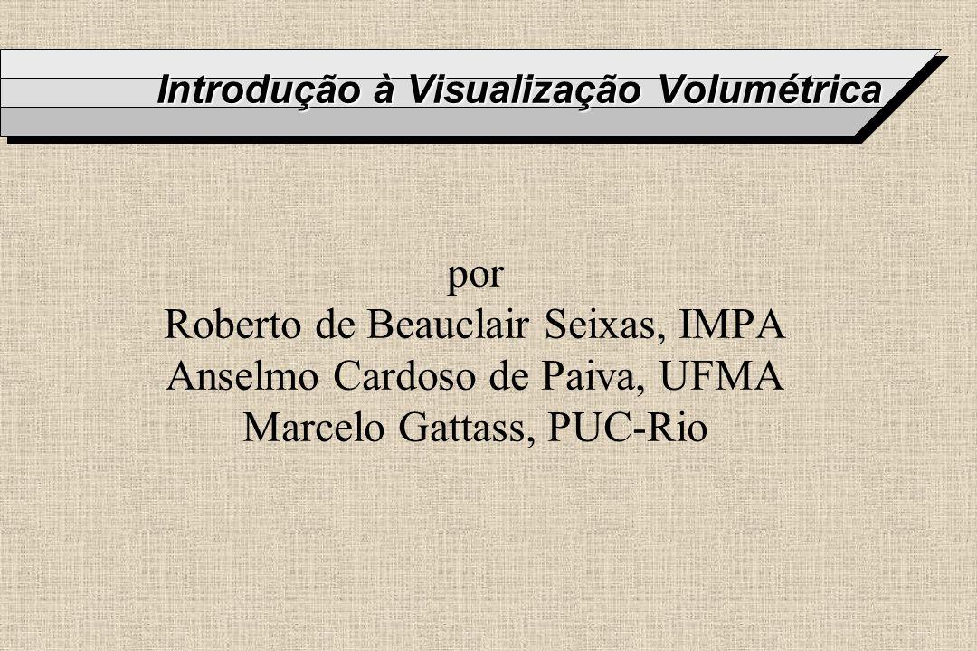 Introdução à Visualização Volumétrica por Roberto de Beauclair Seixas, IMPA Anselmo Cardoso de Paiva, UFMA Marcelo Gattass, PUC-Rio
