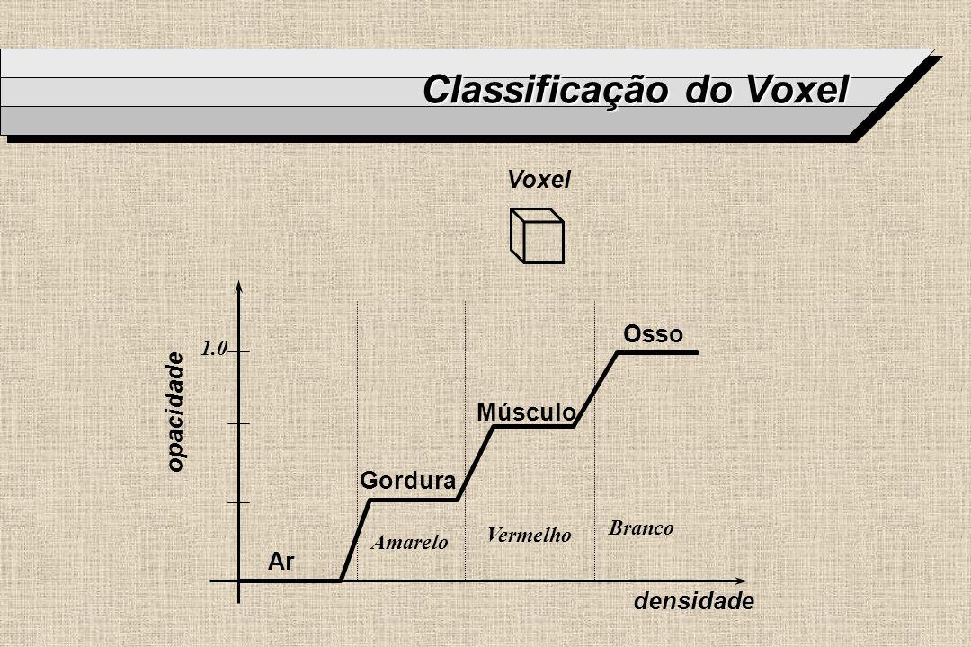 Classificação do Voxel Voxel densidade Ar Gordura Músculo Osso opacidade Amarelo Vermelho Branco 1.0