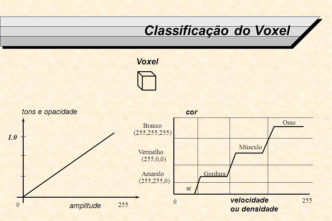 Classificação do Voxel Voxel velocidade ou densidade amplitude tons e opacidade 1.0 cor ar Gordura Músculo Osso 0 255 Branco (255,255,255) Vermelho (2