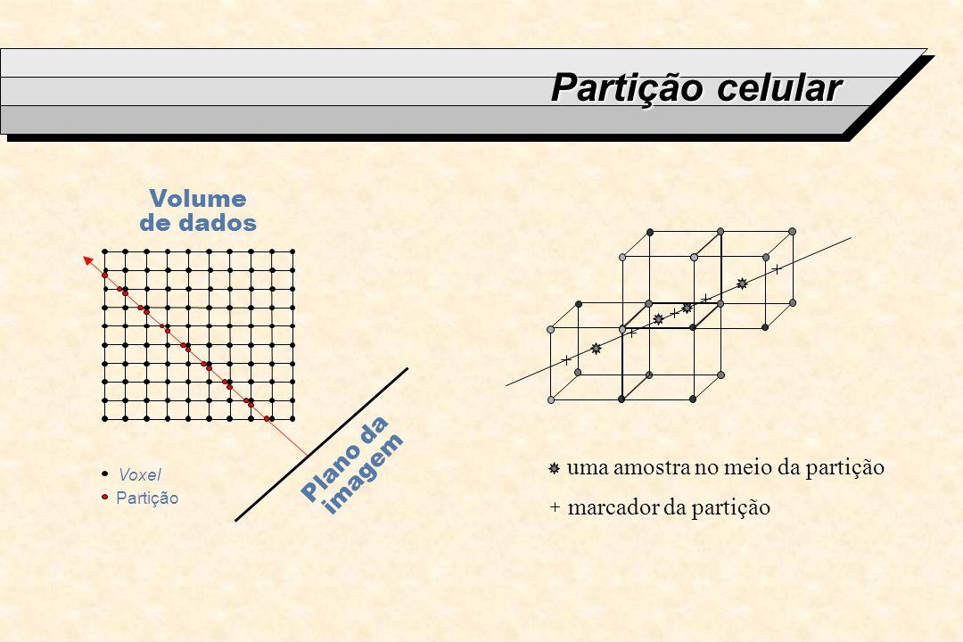Partição celular Plano da imagem Volume de dados Partição Voxel uma amostra no meio da partição marcador da partição