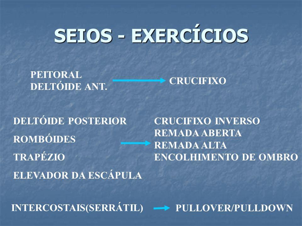 SEIOS - EXERCÍCIOS PEITORAL DELTÓIDE ANT. CRUCIFIXO DELTÓIDE POSTERIOR ROMBÓIDES TRAPÉZIO ELEVADOR DA ESCÁPULA CRUCIFIXO INVERSO REMADA ABERTA REMADA
