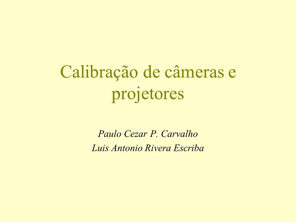 Calibração de câmeras e projetores Paulo Cezar P. Carvalho Luis Antonio Rivera Escriba
