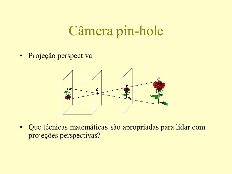 Geometria Projetiva Espaço projetivo RP n Retas pela origem em R n+1 Coordenadas homogêneas (x, y) [x, y, 1] [ x, y, ] [u, v, w] = { (u, v, w)   0} ponto (u/w, v/w) [u, v, 0] = { (u, v, 0)   0} vetor (u, v) R2R2 1