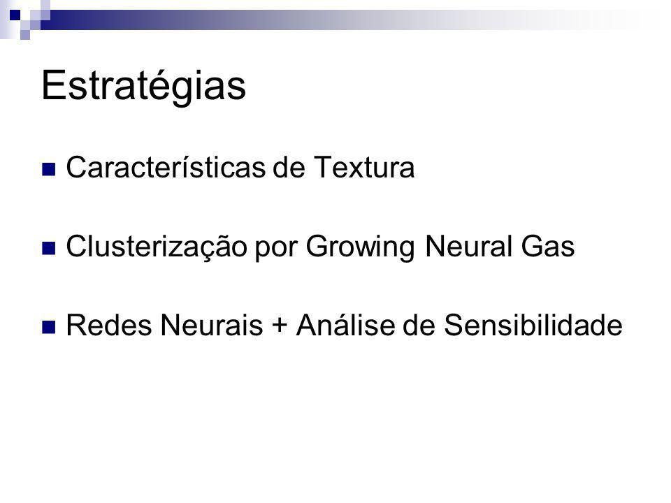 Estratégias Características de Textura Clusterização por Growing Neural Gas Redes Neurais + Análise de Sensibilidade