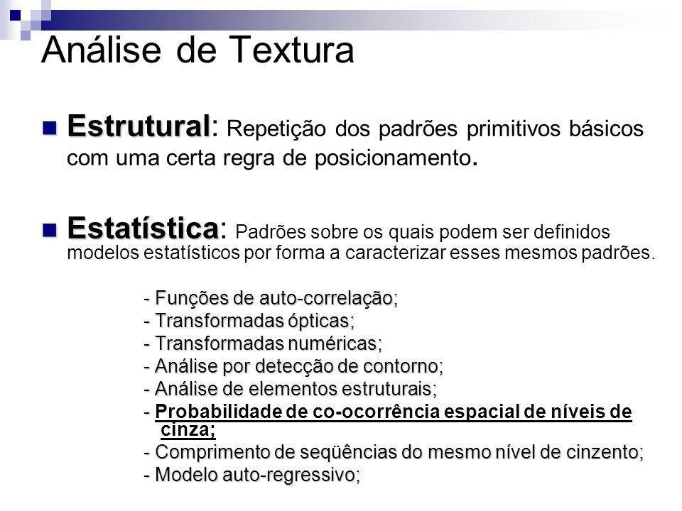 Análise Estatística de Textura (Chen, 1990) O método de análise estatística de textura tem sido desenvolvido usando-se padrões de freqüência (Chen, 1990) (Hsu, 1978; Irons e Peterson,1981) Estatísticas de Primeira ordem (Hsu, 1978; Irons e Peterson,1981) (Haralick et al., 1973) Estatísticas de Segunda ordem (Haralick et al., 1973)