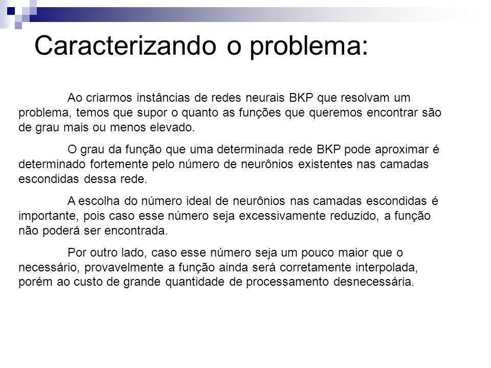 Caracterizando o problema: Ao criarmos instâncias de redes neurais BKP que resolvam um problema, temos que supor o quanto as funções que queremos enco