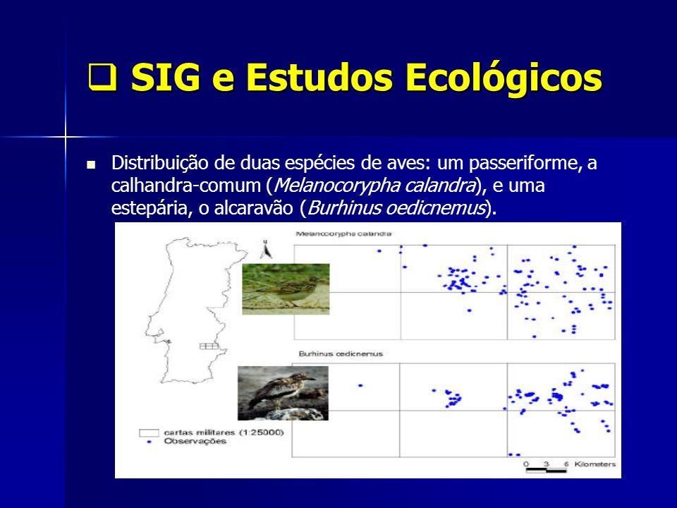 SIG e Estudos Ecológicos SIG e Estudos Ecológicos Distribuição de duas espécies de aves: um passeriforme, a calhandra-comum (Melanocorypha calandra),