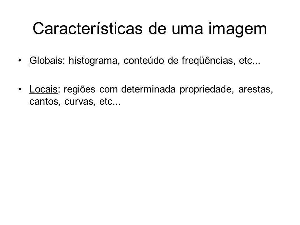 Características de uma imagem Globais: histograma, conteúdo de freqüências, etc... Locais: regiões com determinada propriedade, arestas, cantos, curva