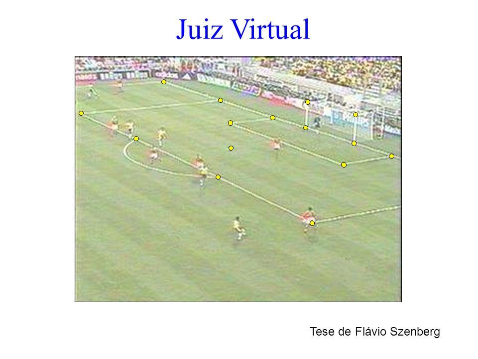 Juiz Virtual Tese de Flávio Szenberg
