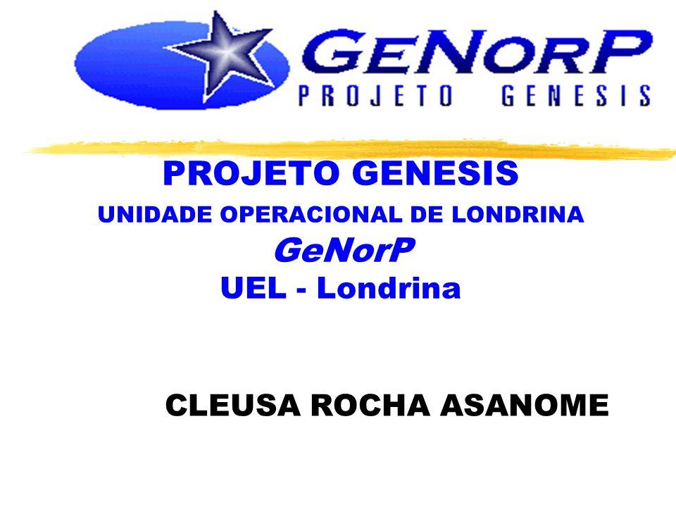 PROJETO GENESIS UNIDADE OPERACIONAL DE LONDRINA GeNorP UEL - Londrina CLEUSA ROCHA ASANOME