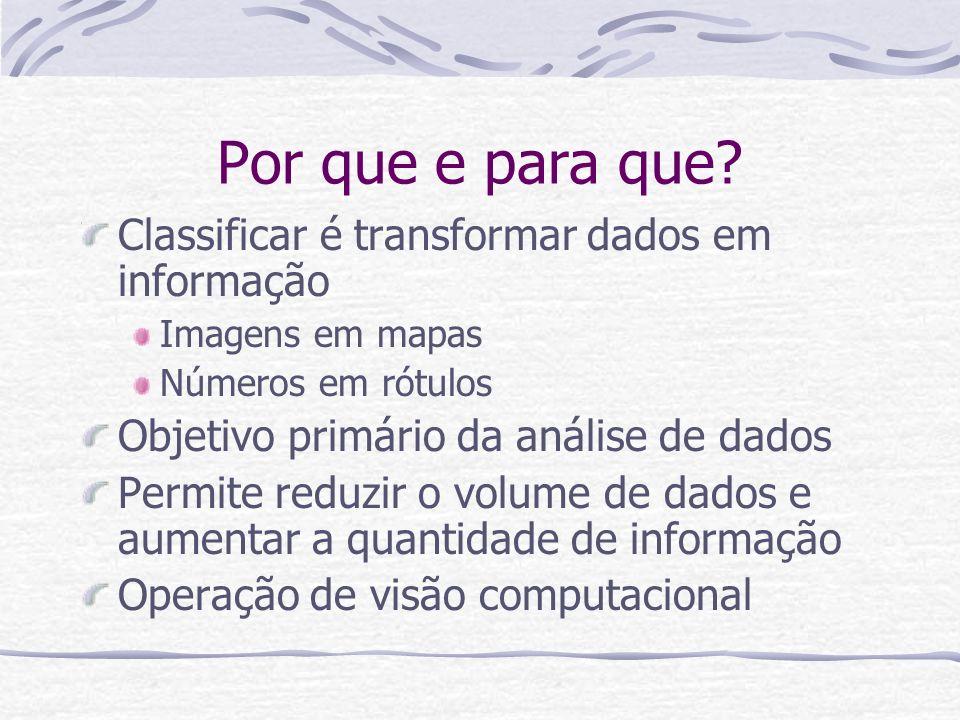 Por que e para que? Classificar é transformar dados em informação Imagens em mapas Números em rótulos Objetivo primário da análise de dados Permite re